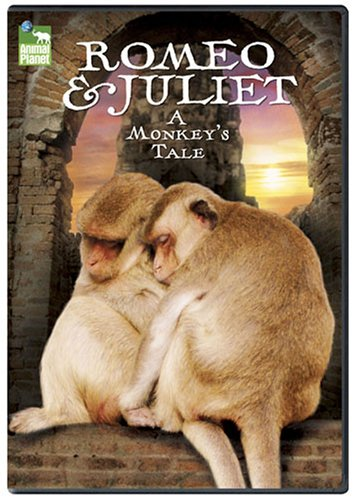 Romeo-Juliet-A-Monkeys-Tale-0